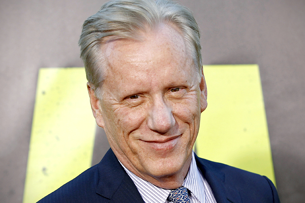 "Actor James Woods arrives at the premiere of the film ""Savages"" in Los Angeles June 25, 2012. REUTERS/Danny Moloshok (UNITED STATES - Tags: ENTERTAINMENT HEADSHOT PROFILE) - RTR345SB"