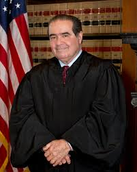Scalia freeuse